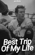 The Best Trip Of My Life [HS] by guccibwby