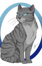 A Cat's Life ( Watt Pad Version ) by Friendlycat16