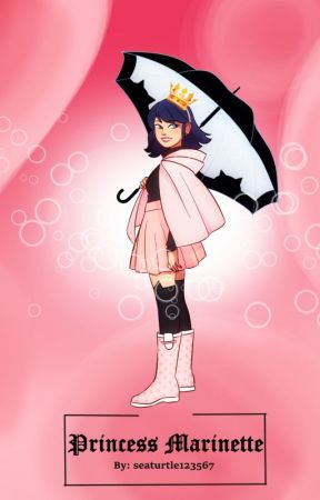 Princess Marinette by seaturtle123567