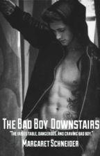 The Badboy Downstairs by Marg-Schneid