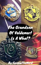 The Grandson Of Voldemort Is A What? by SerinaTheNerd