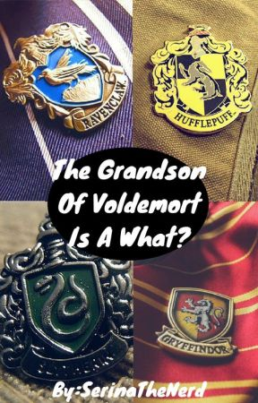 The Grandson of Voldemort is a Hufflepuff? by SerinaTheNerd
