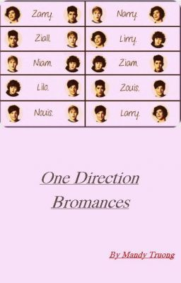 One Direction bromances (oneshot)