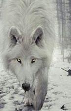 Elemental wolf by vamp8werelover