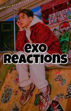 EXO Reactions ♡ by unicornbaekii