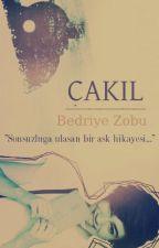 ÇAKIL by bedriyezobu
