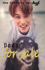 Dogs for sale [KaiSoo] by -dazzl