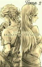 The Legend Of Zelda: Breath Of The Wild 2 by Link_1416