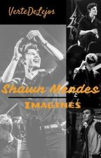 Shawn Mendes Imagines by VerteDeLejos