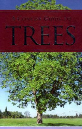 A Concise Guide To Trees. - The Anatomy Of A Tree - Wattpad