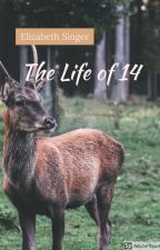 The Life of 14 by 21singere