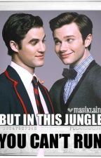 But in this jungle, You can't run. Klaine by mayiblair