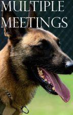 Multiple Meetings by mandralyne