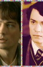 TOM MORVOLO RIDDLE AND DANIEL MORVOLO RIDDLE TWIN BROTHERS SLYTHERIN VS GRYFFIND by 2525bobbykennedy