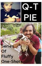 Q - T - PIE (A Series Of Fluffy Brian Quinn One Shots) by raynaofthedead