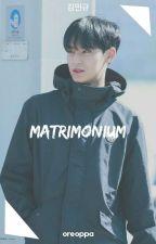 Matrimonium + Mingyu by oreoppa