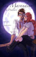 Les Maraudeurs by sandynamite