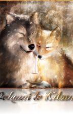 Une kitsuné et son loup by Nimphali