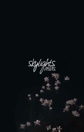 SKYLIGHTS by skypillars