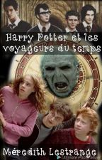 Harry Potter et les voyageurs du temps by sylvieribot