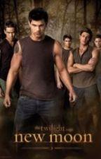Twilight Wolf Pack Preferences by teenagehooligan