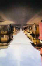 GUINAAW TRAIN by iddi_le_premier