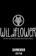 GAMMENIAN 2018 by Inter_WildflowerPack