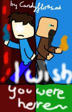 I wish you were here - Minecraft Story (DISCONTINUING) by candyflossed