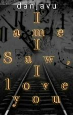 I Came, I Saw, I Love You by danjavu