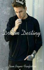 Dream Destiny//L.P by lost_night_child