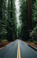 Long Road Ahead || Twilight by monicaskye64
