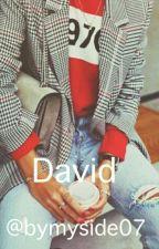 David by bymyside07
