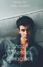 Shawn Mendes Imagines by Little_Apple05