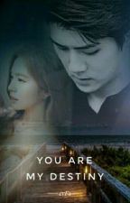 You Are My Destiny by erFa_kim