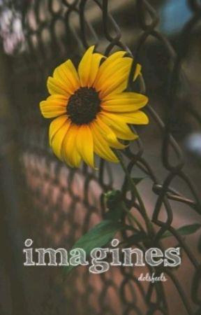 Imagines  by dolsfeels