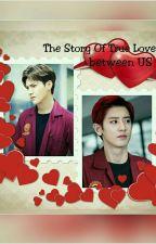 The Story Of True Love Between US  by NiNifan