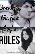 Breaking the BAD BOY'S RULES (will not be completed) by imaganator4ever