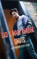 EXO x Male Reader Smuts by loyalminseokstan