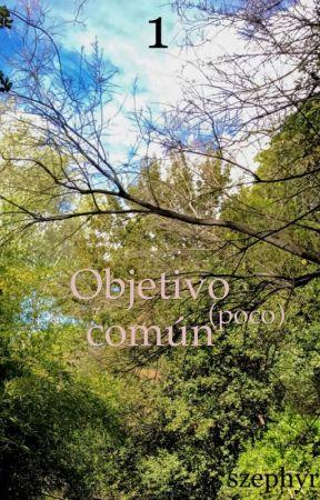 1 - Objetivo (poco) común by szephyr