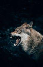 Protectores 1: Lobo De Luna Nueva by luciaswayne