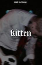 Kitten | frerard  by -shadesoftwiggy