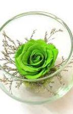 [JPSS]Hoa hồng xanh by Hydrangea_Prince