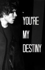 You're My Destiny{L.S MPreg} UNDER EDITING by samelovelarry