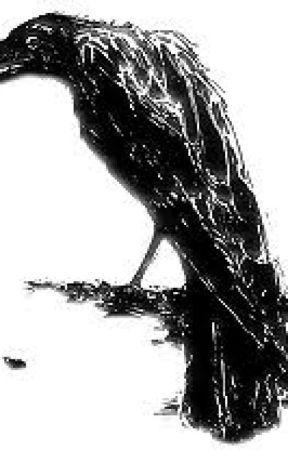 Edgar Allan Poe - Havran by DanielMuller98