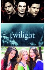 Twilight: We Meet Again   Completed    by twd_daryldixonfan