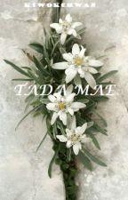 TADA MAE by Kiwokchwan