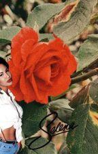 Selena by wentworthmiller1