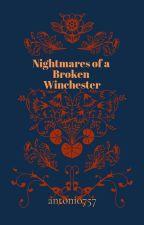 Nightmares of a Broken Winchester by antonio757