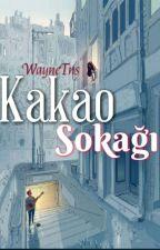 KAKAO SOKAĞI..! by waynetns