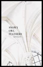 𝙎𝙉𝙊𝙒𝙔 𝙊𝙒𝙇 𝙁𝙀𝘼𝙏𝙃𝙀𝙍𝙎 | MISC. by snowwayowl